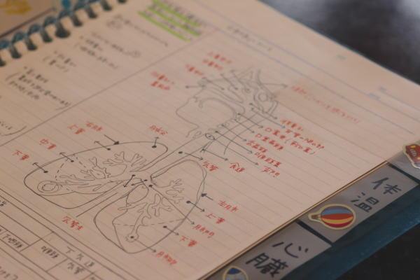 看護学生のノートVSルーズリーフ勉強方法、模索中 – 面接で ...