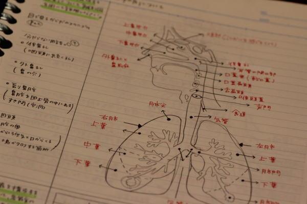 看護学生のノートVSルーズリーフ勉強方法、模索中 | 面接で合格 ...